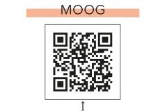14-moog