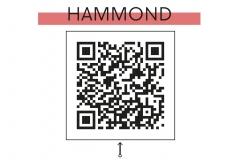 18-hammond